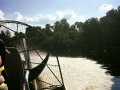Airboat_tour_rides_Florida_alligators3