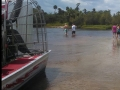 Airboat_tour_rides_Florida_alligators_fossil_hunting