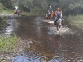 florida_horse_back_trail_tours257