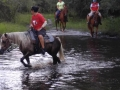 florida_horse_back_trail_tours259