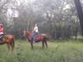 florida_horse_back_trail_tours260