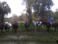 florida_horse_back_trail_tours262
