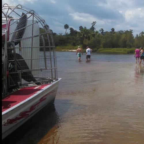 Airboat tour rides Florida alligators fossil hunting